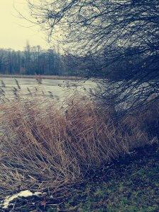 zugefrohrener Schnackensee